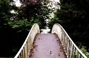 bridgecurve